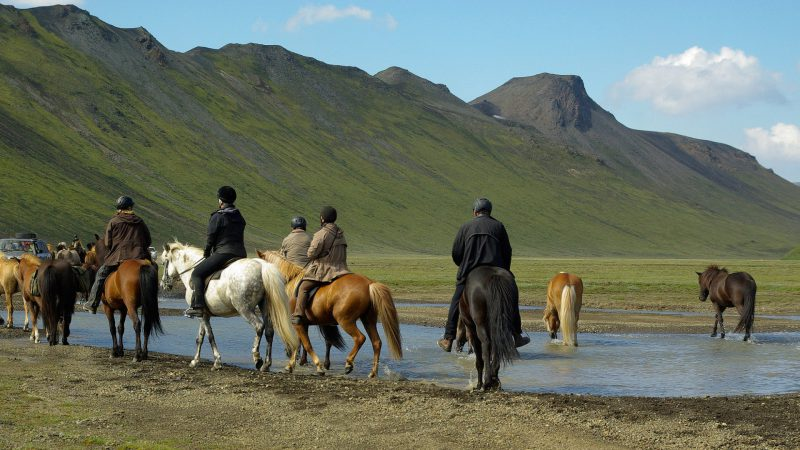 Horse riding Hestheimar - Klara's Farm